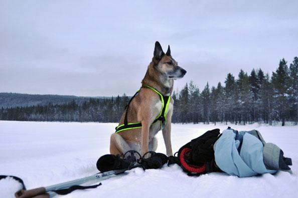 jussi-ski