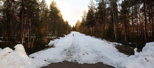 dorpsweg-sneeuw