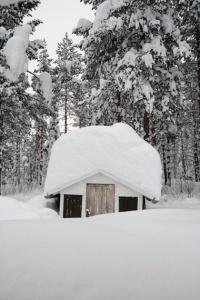 sneeuw-schuurtje
