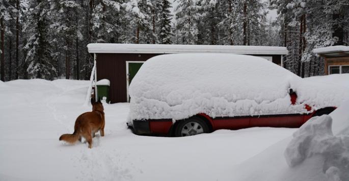 jussi-veel-sneeuw