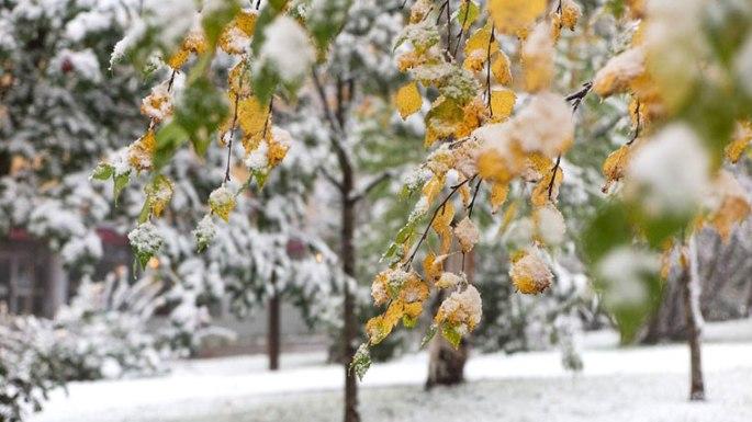 kiruna-eerste-sneeuw-liten