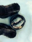 Verse vis gekregen van drie vissers bij wie ik de nacht had doorgebracht.