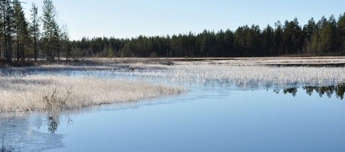 meer-ijs