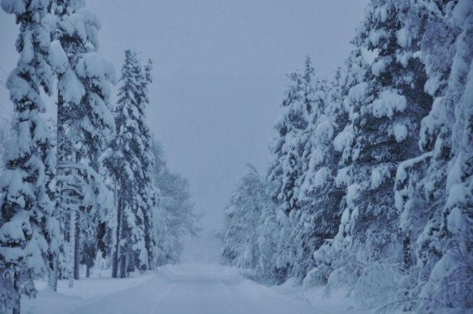 sneeuwval2