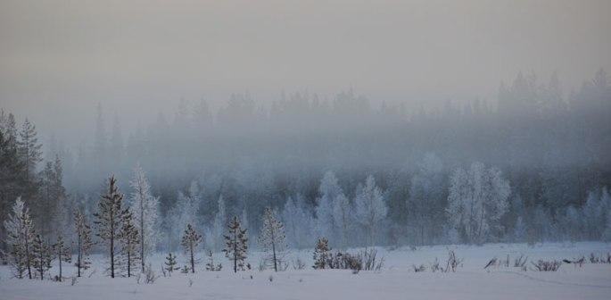 winter-2017-009